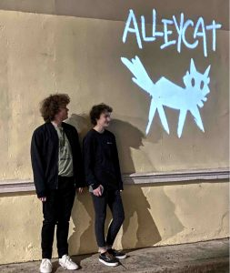 Alleycat projection